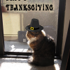 Thumbnail image for Happy Thanksgiving