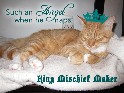 He is such an angel when he naps. King Mischief Maker