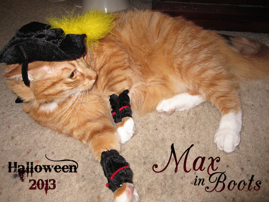 Max in Boots. Halloween 2013