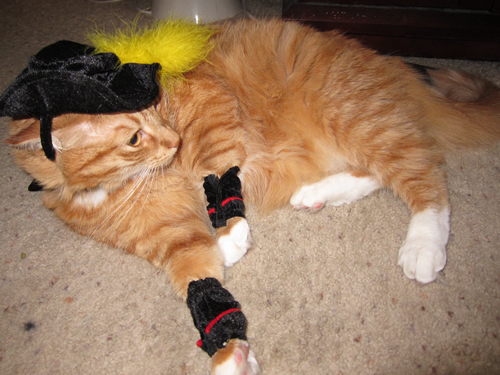 Max as Puss in Boots