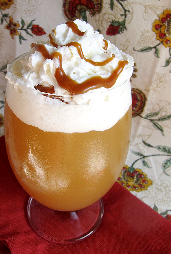 Caramel Apple Cider - a perfect Fall beverage | www.EatLaughPurr.com