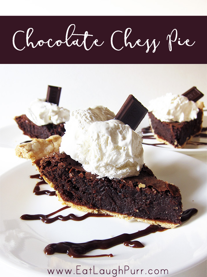 Chocolate Chess Pie - basically a gooey brownie packed in a crisp buttery pie crust. Decadent and delicious!